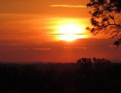 Dicas do safári no Kruger - Kruger National Park, África do Sul