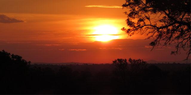 Safári na África do Sul - Kruger, Skukuza