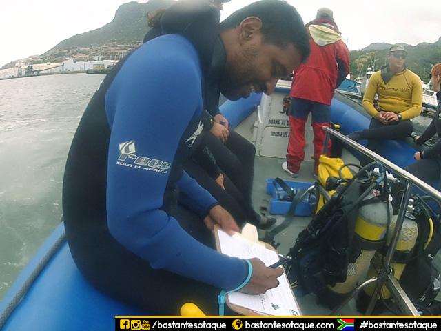 Mergulho com focas/seal snorkeling em Cape Town, África do Sul