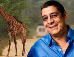 Dicas da África do Sul: roteiro no Kruger