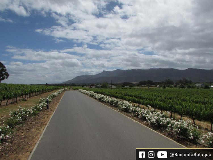 Allée Bleue - Franschhoek, África do Sul