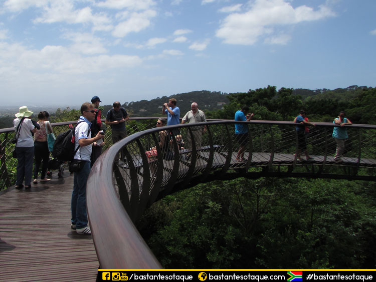 Jardim Botânico de Kirstenbosch - Cidade do Cabo/Cape Town, África do Sul