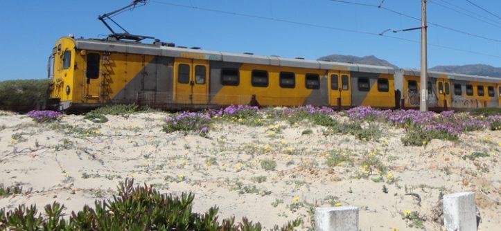 Cape Town sem carro