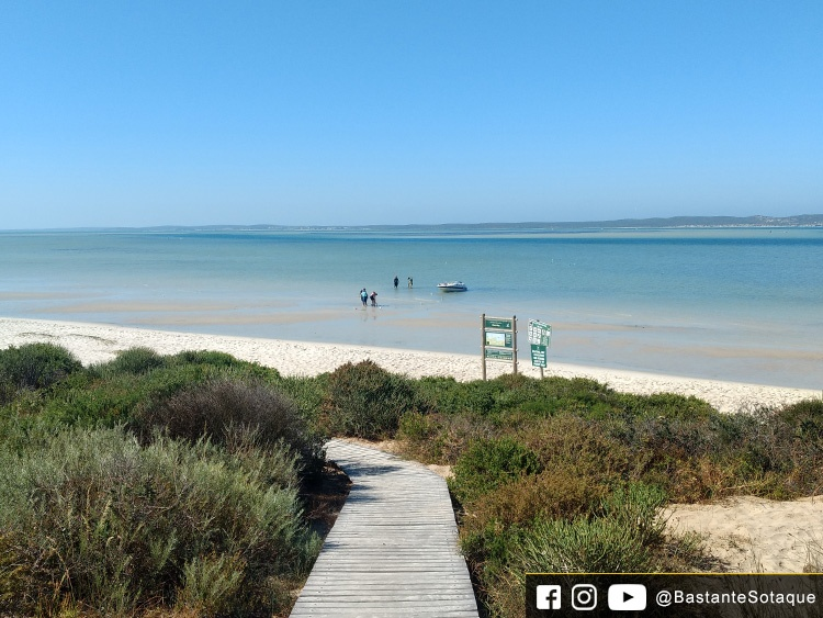 Shark Bay - Langebaan, África do Sul